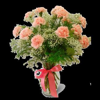 Carnation Favorite